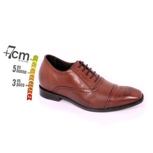 Zapato Formal British Café Max Denegri +7cm de Altura