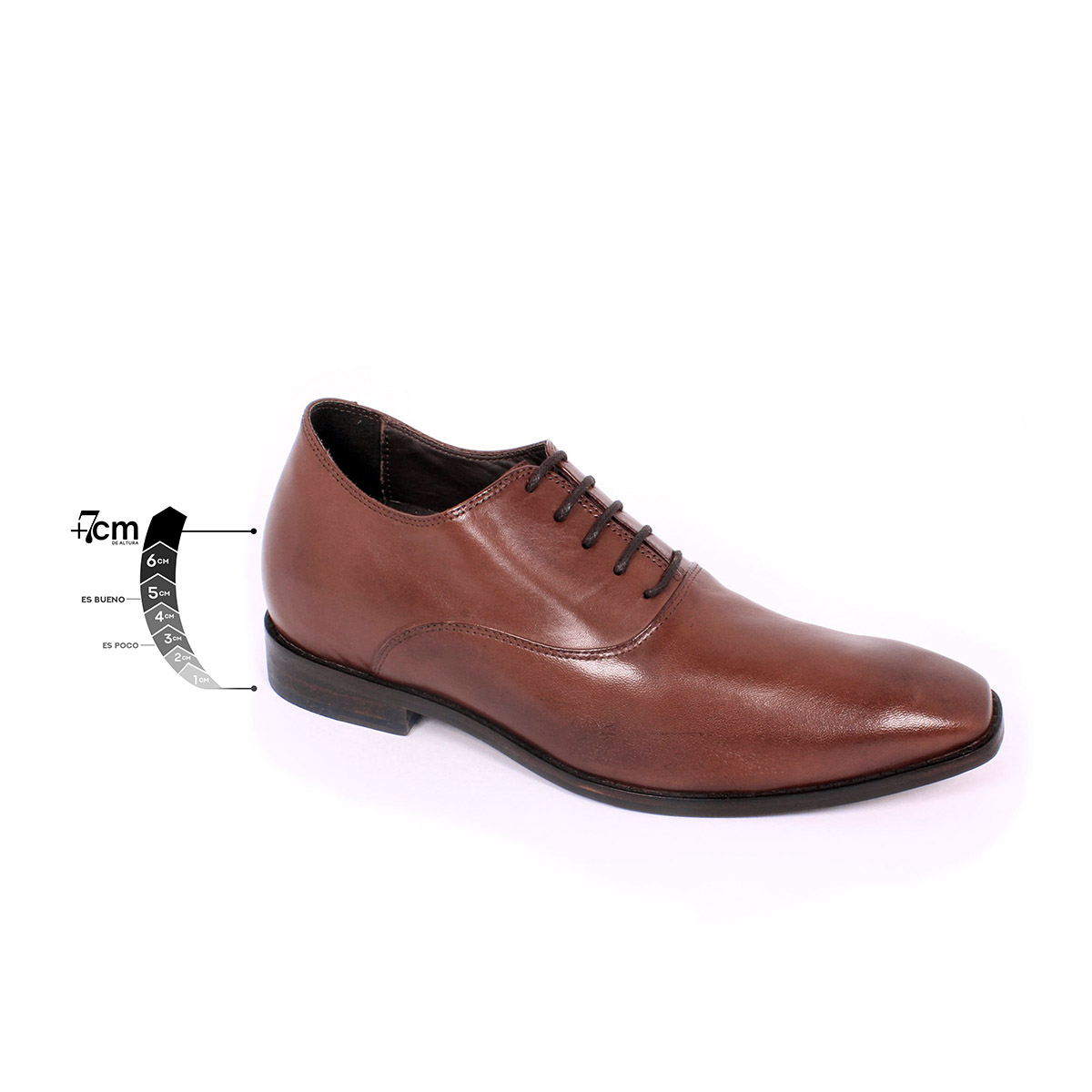 Zapato Formal Elegant Café Max Denegri +7cms de Altura_75306